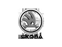 Skoda | 斯柯达